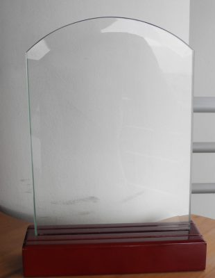 Trophée bois verre